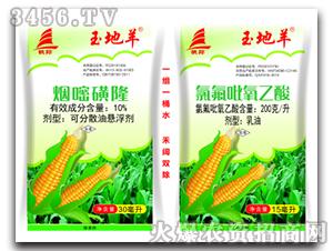 玉米田专用除草剂-玉地羊-千臣生物