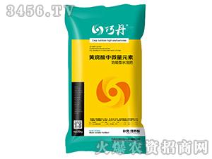 黄腐酸中微量元素水溶肥-巧丹