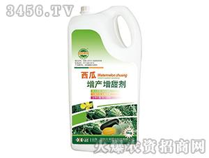 西瓜增产增甜剂-田园季丰-大丰肥业