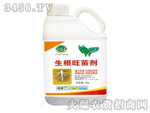 生根旺苗剂-田园季丰-大丰肥业