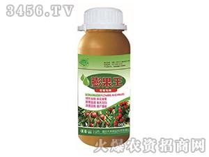 红枣专用膨果王-田园季丰-大丰肥业