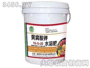 大姜专用黄腐酸钾水溶肥13-5-22-田园季丰-大丰肥业