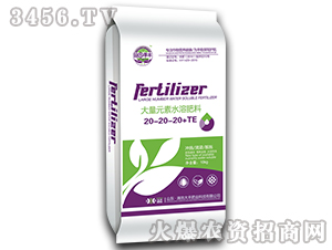 大量元素水溶肥料20-20-20+TE-田园季丰-大丰肥业