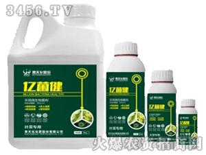 黄腐酸微生物菌剂-贵天化