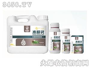 生肽氨基酸液肥-水精灵(叶菜优选)-贵天化