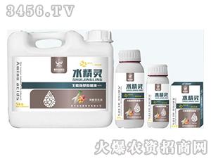生肽氨基酸液肥-水精灵(块根茎优选)-贵天化