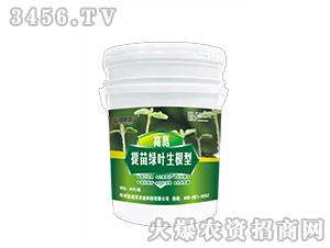 高氮-提苗绿叶生根型-