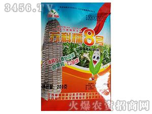 苏科糯8号-玉米种子-高科种业