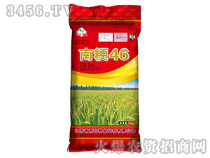 南粳46-水稻种子-高科种业