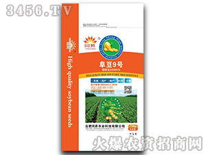 阜豆9号-大豆种子-东星农业