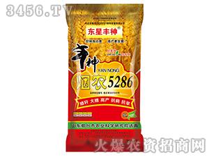 烟农5286-小麦种子-东星丰神