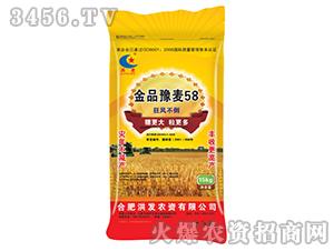 金品豫麦58-小麦种子-东星农业
