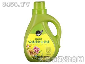 濃縮植物生命液-金正生物