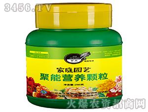 聚能營養顆粒-金正生物