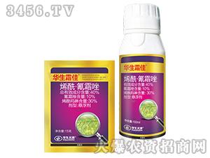烯酰·氰霜唑-华生霜佳-上品生物
