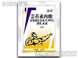 0.004%芸苔素内酯水剂-适农-祯禧堂