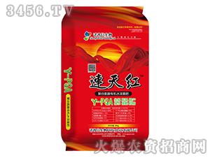 聚谷氨酸有机水溶菌肥-连天红-诺普信