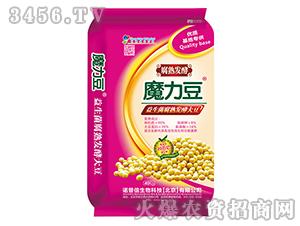 40kg益生菌腐熟发酵大豆-魔力豆-诺普信