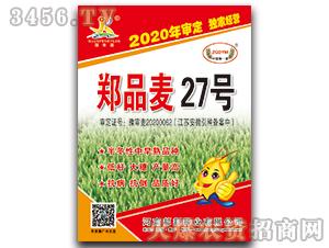 郑品麦27号-小麦种子-邦邦种业