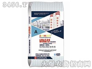硝硫基(复混肥料)-大化肥业