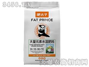 大量元素水溶肥10-10-30+TE肥太子-霸尔绿博