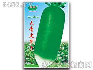 大青皮萝卜-萝卜种子-云寿