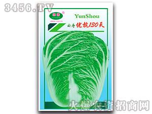 优抗130天-白菜种子-云寿