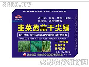 微生物肥-韭菜葱蒜干尖绿-瑞丰德