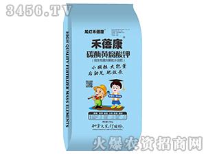 碳酶黄腐酸钾-禾蓓康-龙灯