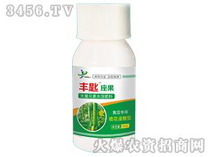 含氨基酸水溶肥-丰匙座果(黄瓜专用)-金牌化工