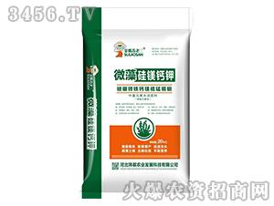 微藻硅镁钙钾-金嘴苏老三-玮祺