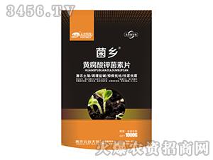 黄腐酸钾菌素片-菌乡-云台大化