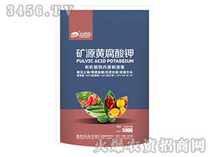 1000g矿源黄腐酸钾-云台大化