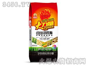 植物蛋白活性酶-大力量-奥丰肥业