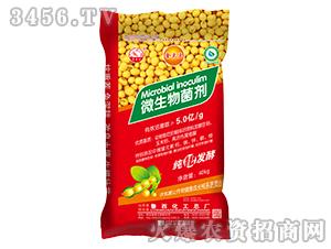 微生物菌剂-金豆豆-鲁西化工