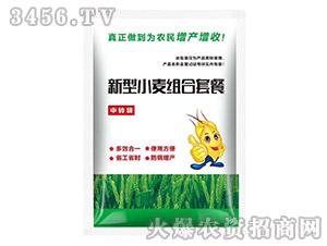 新型小麦组合套餐-邦农农业