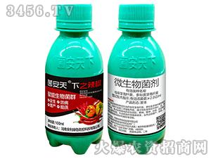 微生物菌剂-菌安天下之辣椒