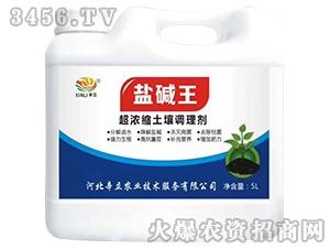 超浓缩土壤调理剂-盐碱王-辛立
