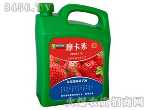 草莓抑菌精华液-摩卡素-强芯