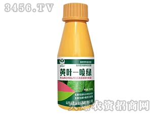 【200g】黄叶一喷绿-晨茂农业