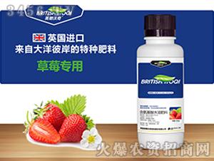 草莓专用含氨基酸水溶肥料-英朗沃奇