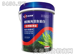 碳酶海藻鱼蛋白-施保康