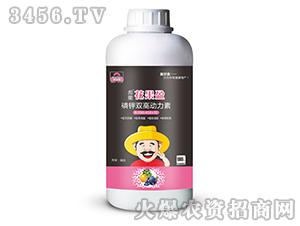 1000ml磷钾双高动力素0-350-450+TE-彪能花果盈-美尔森