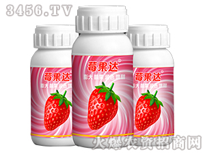 莓果达-星泉农业