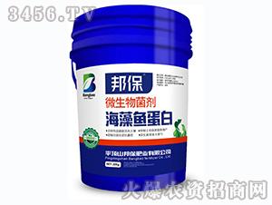 微生物菌剂-海藻鱼蛋白-邦保传奇