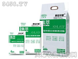植物蛋白发酵激活酶-集萃-克姆莱