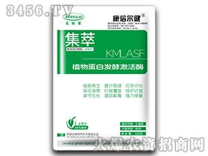 200g植物蛋白发酵激活酶-集萃-克姆莱