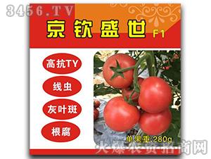 京钦盛世F1-番茄种子-满天红日