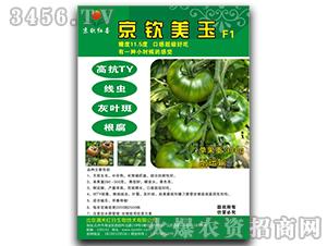 京钦美玉F1-番茄种子-满天红日