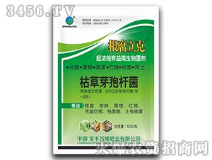 超浓缩有益微生物菌剂-根腐立克-宝丰万隆